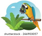 vivid parrot is sitting on the... | Shutterstock .eps vector #266903057
