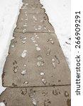 Footprints Frozen In Snow...