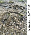 Small photo of Horses hoof mark on the ground