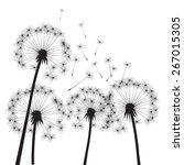 black vector dandelions | Shutterstock .eps vector #267015305