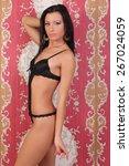 beautiful sexy woman in black... | Shutterstock . vector #267024059