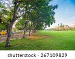 green grass field and tree in... | Shutterstock . vector #267109829