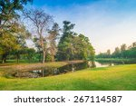 green lawn in city park with...   Shutterstock . vector #267114587