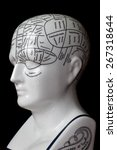 Porcelain Phrenology Head Used...