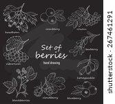 set of forest berries on dark...   Shutterstock .eps vector #267461291
