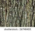 the bark on a trunk of a tree... | Shutterstock . vector #26748403