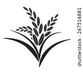 rice | Shutterstock .eps vector #267516881
