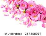 beautiful pink rose petals... | Shutterstock . vector #267568097