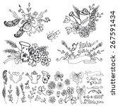 doodle floral group set.outline ... | Shutterstock .eps vector #267591434