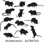 Mouses Vector