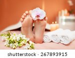 spa treatments for the feet....   Shutterstock . vector #267893915