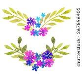 hand painted watercolor... | Shutterstock .eps vector #267896405