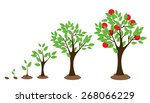 vector illustration of tree... | Shutterstock .eps vector #268066229