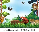Many Animals In The Forest