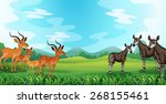 rare animals standing on the... | Shutterstock .eps vector #268155461
