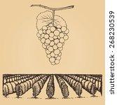 hand drawn  vector illustration ... | Shutterstock .eps vector #268230539