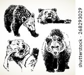 bear sketches set. hand drawn... | Shutterstock .eps vector #268293029
