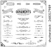 Vintage Ornaments - Collection of hand drawn vintage ornaments | Shutterstock vector #268317989