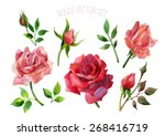 Set Of Red Roses Isolated On...