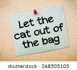 Small photo of Let The Cat Out of The Bag Message. Recycled paper note pinned on cork board. Concept Image