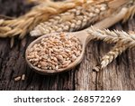 wheat and cereals | Shutterstock . vector #268572269