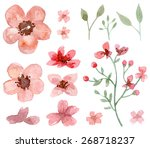 set of flower and leaf... | Shutterstock . vector #268718237
