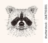 Sketch Raccoon Face. Hand Draw...