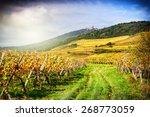 Landscape With Autumn Vineyard...