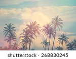 tropical jungle in background... | Shutterstock . vector #268830245