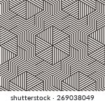seamless  pattern. stylish... | Shutterstock .eps vector #269038049
