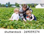 two little funny kid boys and...   Shutterstock . vector #269059274