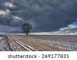 Winter Rural Landscape  ...