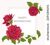 blossoming flowers. vector... | Shutterstock .eps vector #269184641