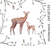 Watercolor Deers Illustration....