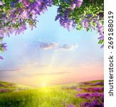 Stock photo spring landscape 269188019