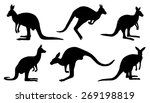 Kangaroo Silhouettes On The...
