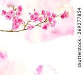 pink background with branch of... | Shutterstock .eps vector #269277854