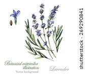 watercolor vector botanical... | Shutterstock .eps vector #269290841
