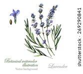 watercolor vector botanical... | Shutterstock .eps vector #269290841