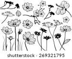 Set Of Floral Element For...