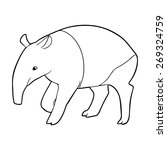 Tapir Outline Illustration