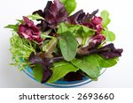 Close up of spring mix organic salad over white paper - stock photo
