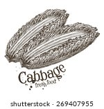 ripe cabbage vector logo design ... | Shutterstock .eps vector #269407955