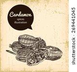 cardamon illustration on... | Shutterstock .eps vector #269441045
