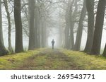melancholy emotions concept ... | Shutterstock . vector #269543771