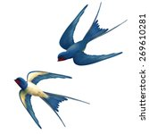 Vector Two Flying Swallows On...