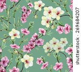 peach flowers and orchids ... | Shutterstock . vector #269684207