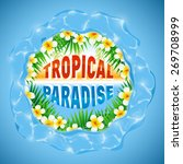 tropical paradise  typography... | Shutterstock .eps vector #269708999