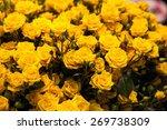 Beautiful Bouquet Of Yellow...