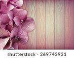 stunning pink flowers on pink... | Shutterstock . vector #269743931
